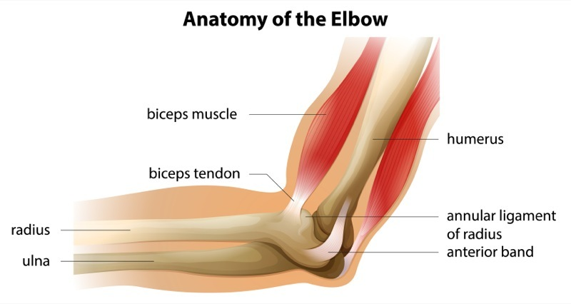 Elbow Pain: Causes and Treatment